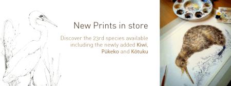 Fantail, piwakawa, print, bird, new zealand, New Zealand native bird, blue, Emilie Geant, illustration, watercolor, painting, ink, nature, feather, kiwi, kiwiana