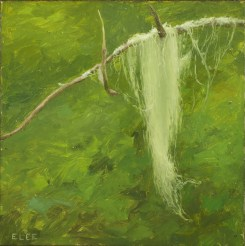 "Moss, oil on panel, 5""x5"""