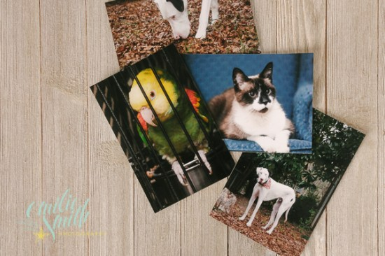 Photo storage - small prints and gift prints