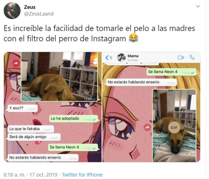 Sasha dog instagram AR