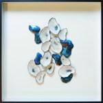 Shells 24 x 24