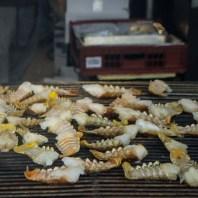 Lobsters are kind of disturbing, y'know?