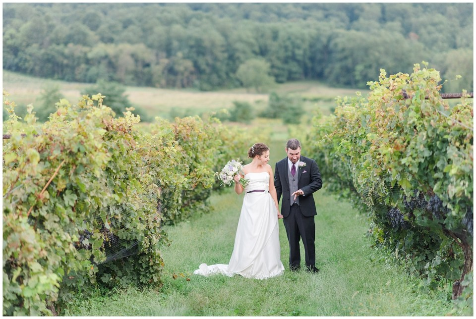 breaux-vineyards-purcellville-virginia-wedding-photo-39_photos.jpg