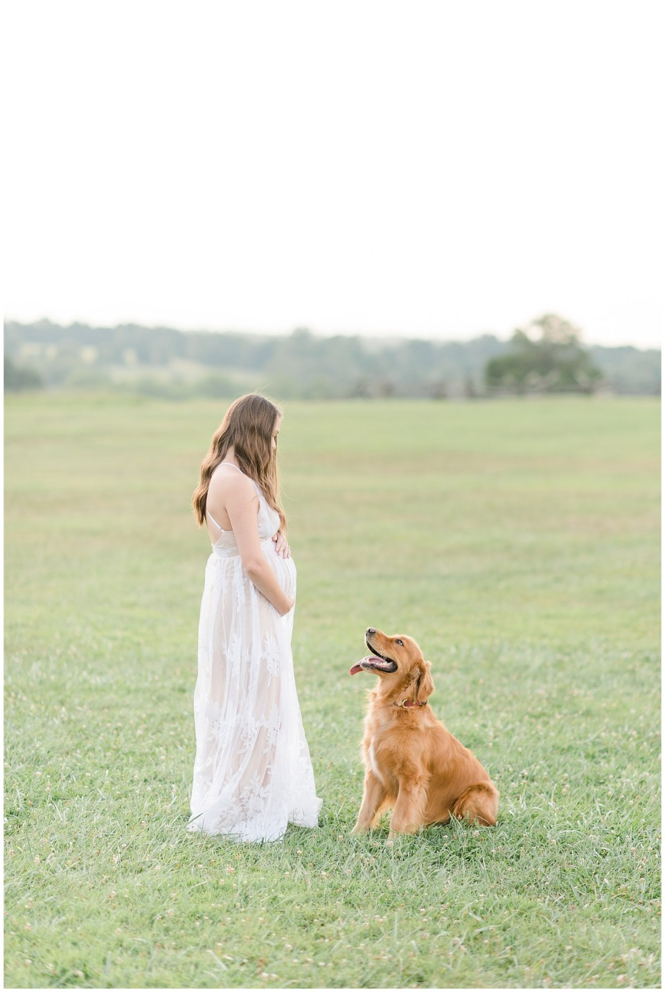 cute-maternity-photo-ideas-with-dog-virginia-maternity-photographer