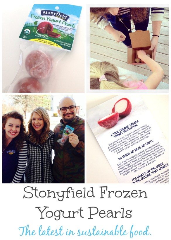 stonyfield frozen yogurt pearls boston