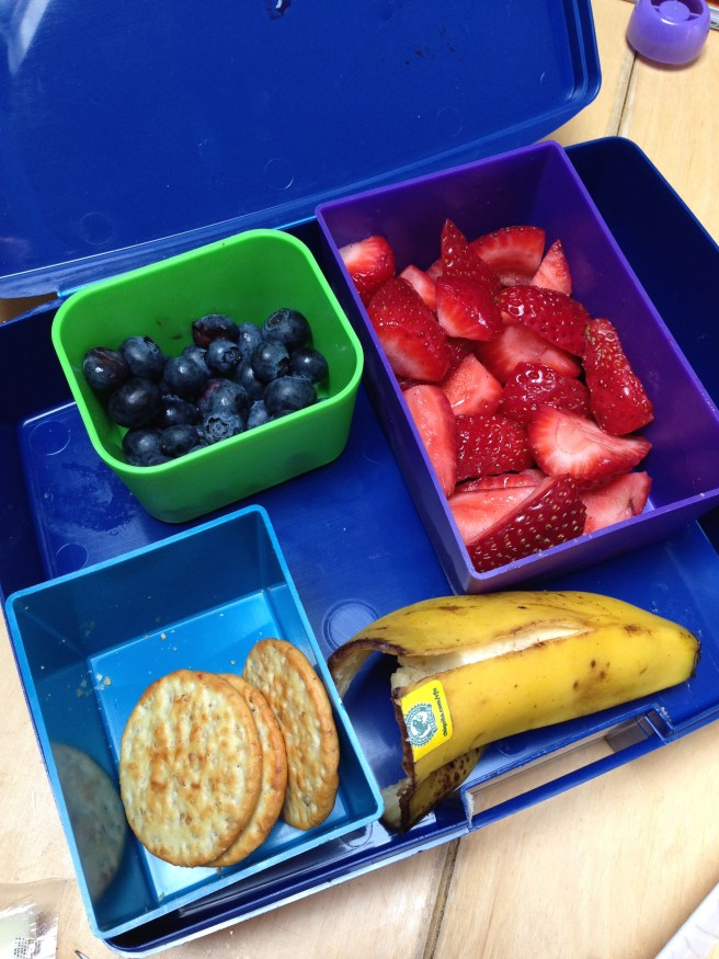 Kids fruity lunch in laptop lunchbox
