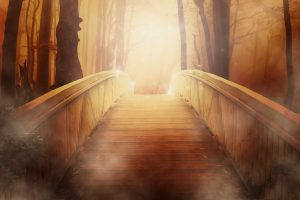a drawing of a bridge leading forward into a forest with golden light at the far side
