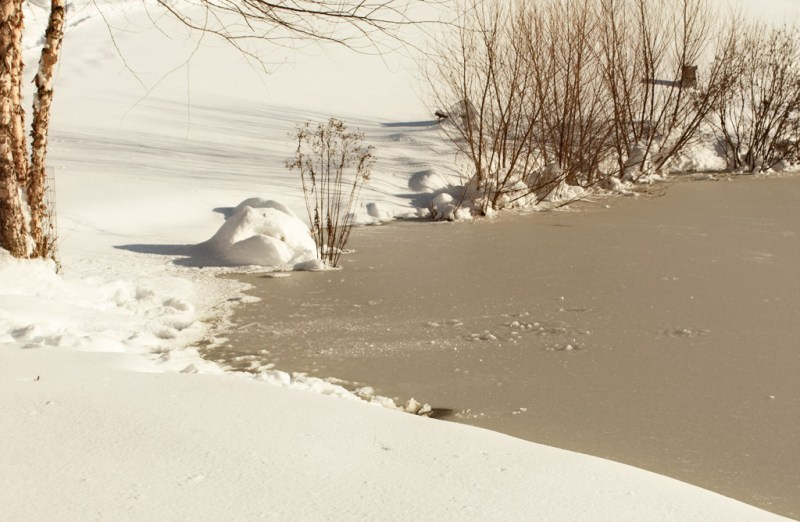 Edge of the frozen lake