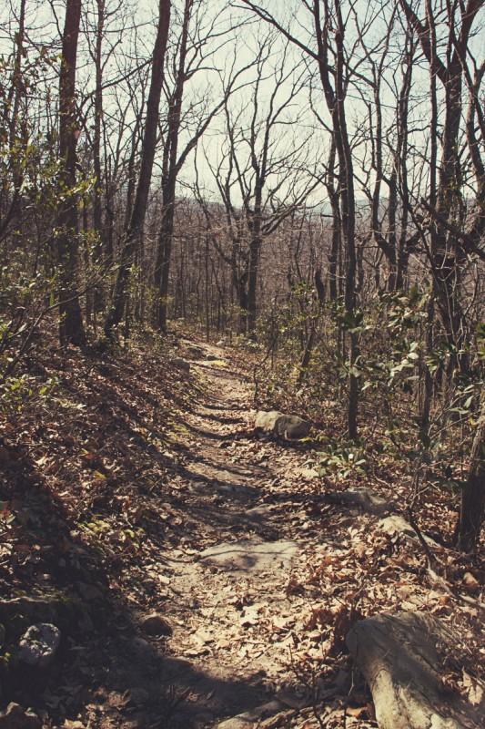 First Hiking trail