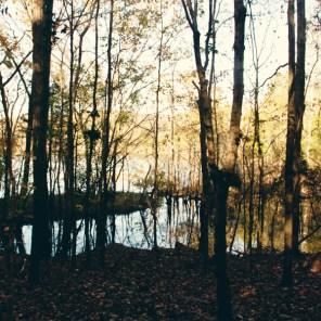 1021_lake-shade