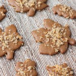 Molasses Spice Cookies with Orange Sugar