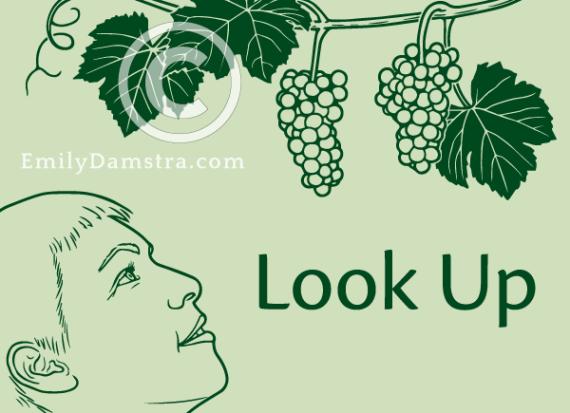 Look Up illustration