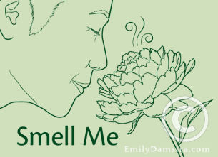 Smell Me illustration
