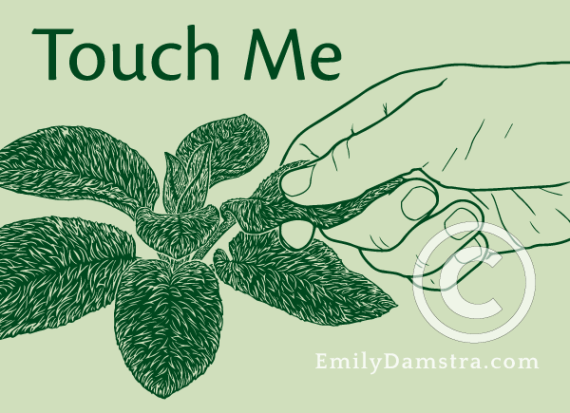 Touch Me illustration