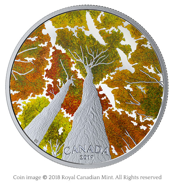 Maple canopy with geese silver coin
