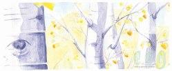 september : aspen