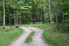 The driveway to the house on Drummond Island.