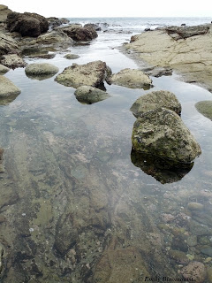 Tide pools in Puerto Lopez, Ecuador