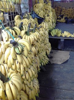 Banana Vendor, Feria Libre, Cuenca, Ecuador