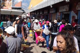 Tomato vendor, Feria Libre, Cuenca, Ecuador