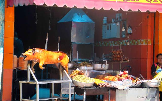 Pig roasting in Cuenca, Ecuador