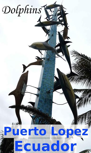 Dolphins - Puerto Lopez, Ecuador