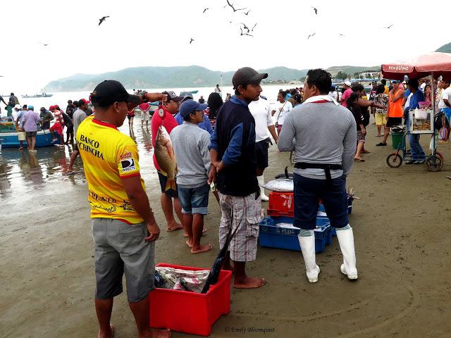 Fish Market, Puerto Lopez, Ecuador