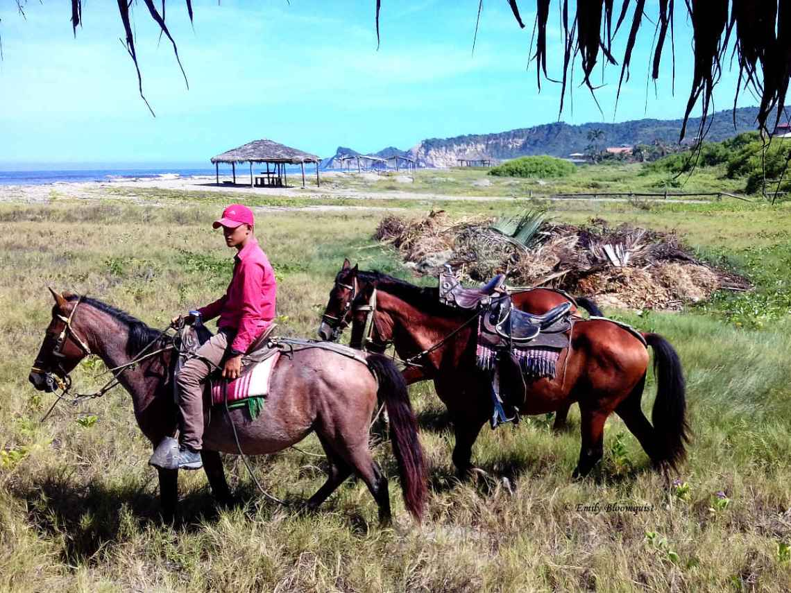Guide arriving for horseback riding