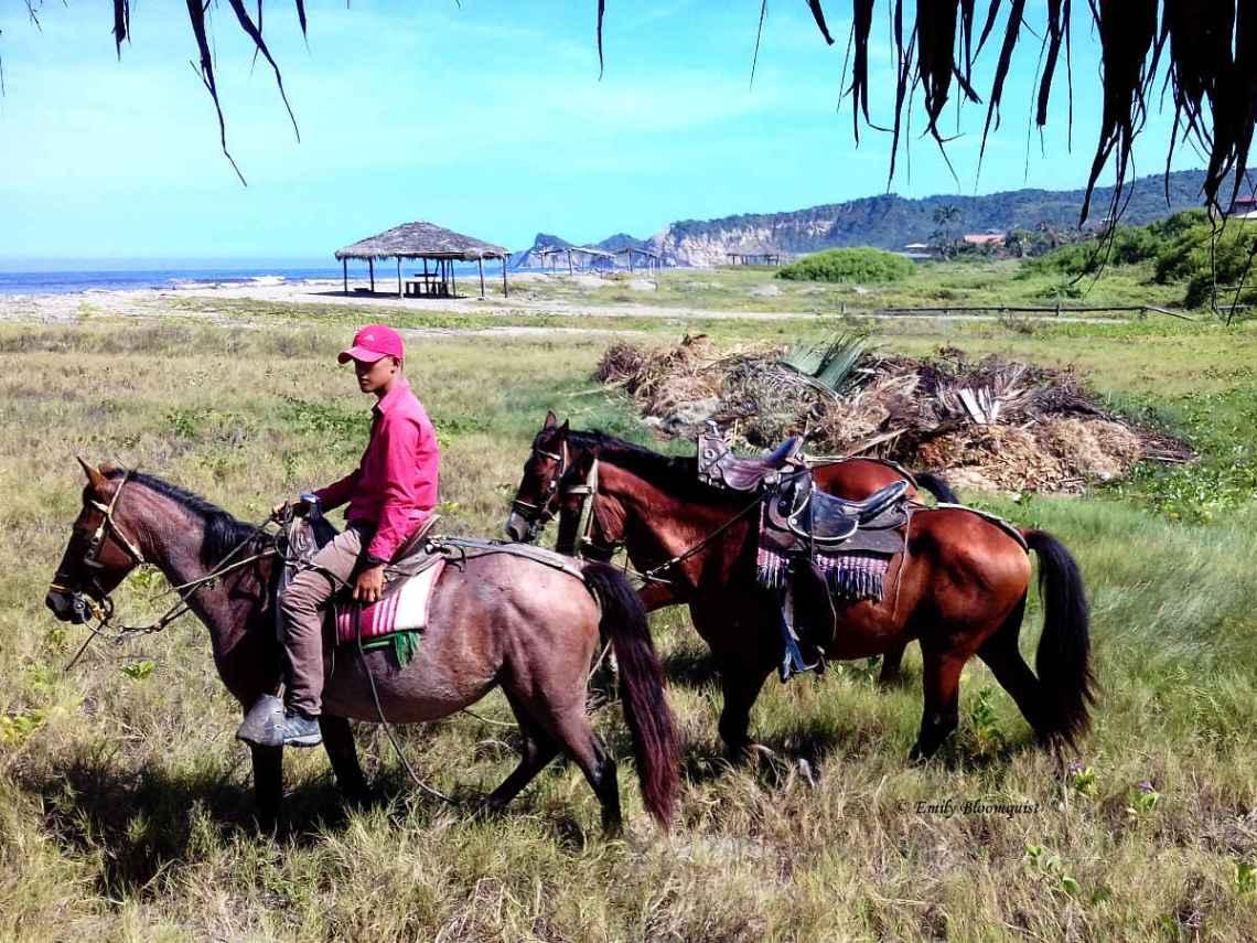 Guide arriving for horseback riding