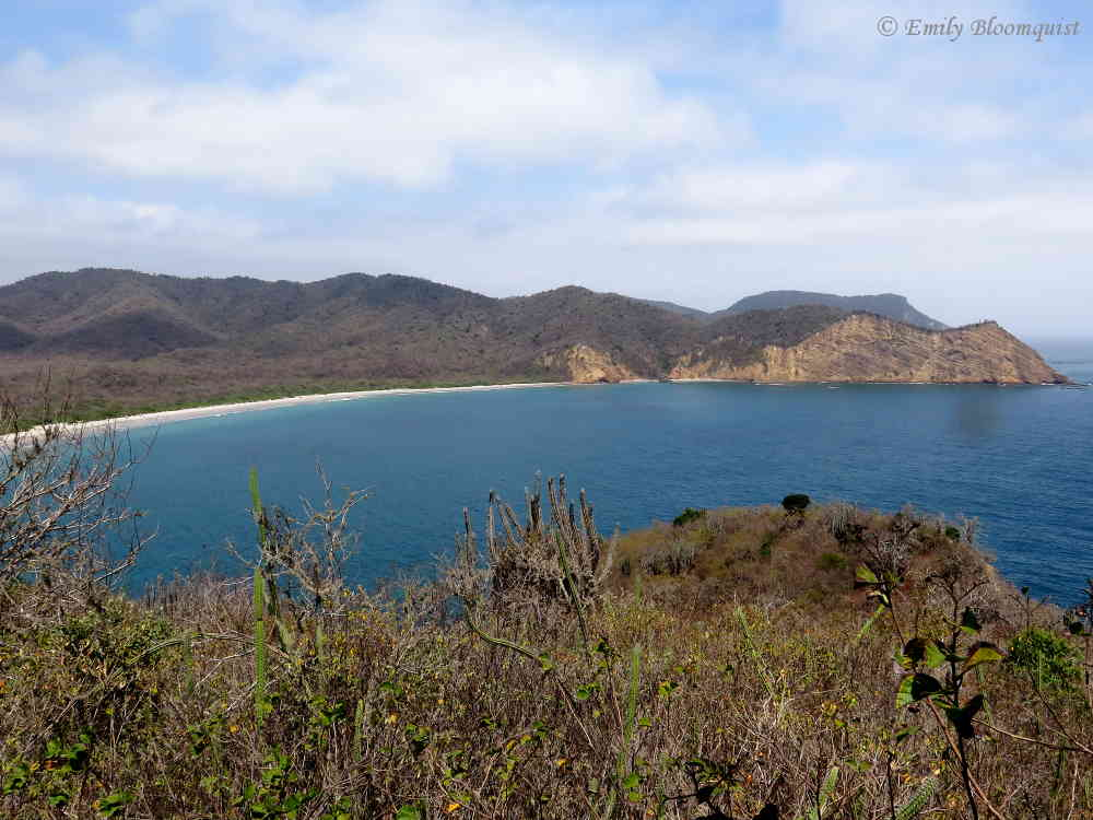 Los Frailes Beach from lookout platform