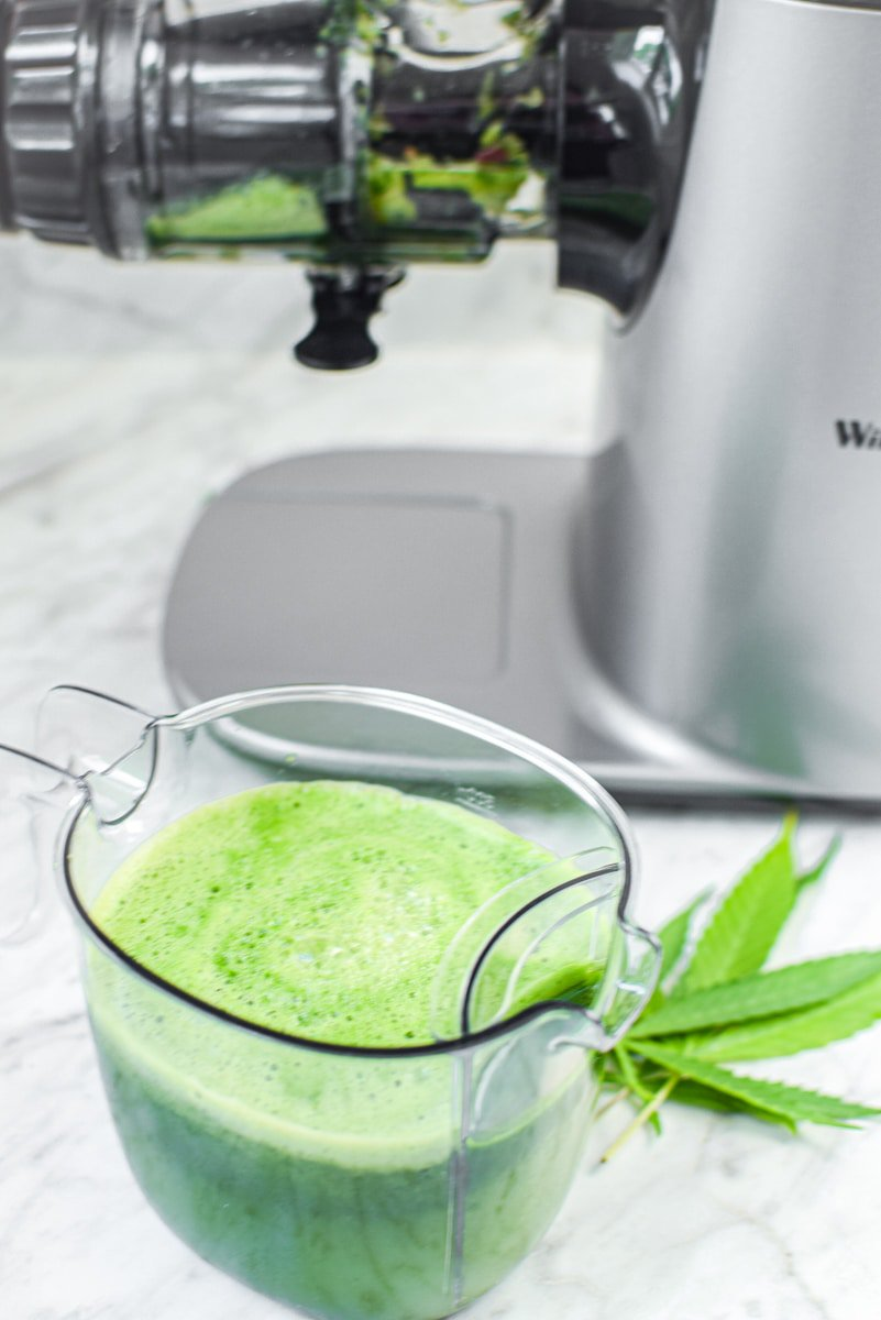 Raw Cannabis Juice by Emily Kyle Nutrition21 - Incredible Benefits of Raw Cannabis + Juice Recipe