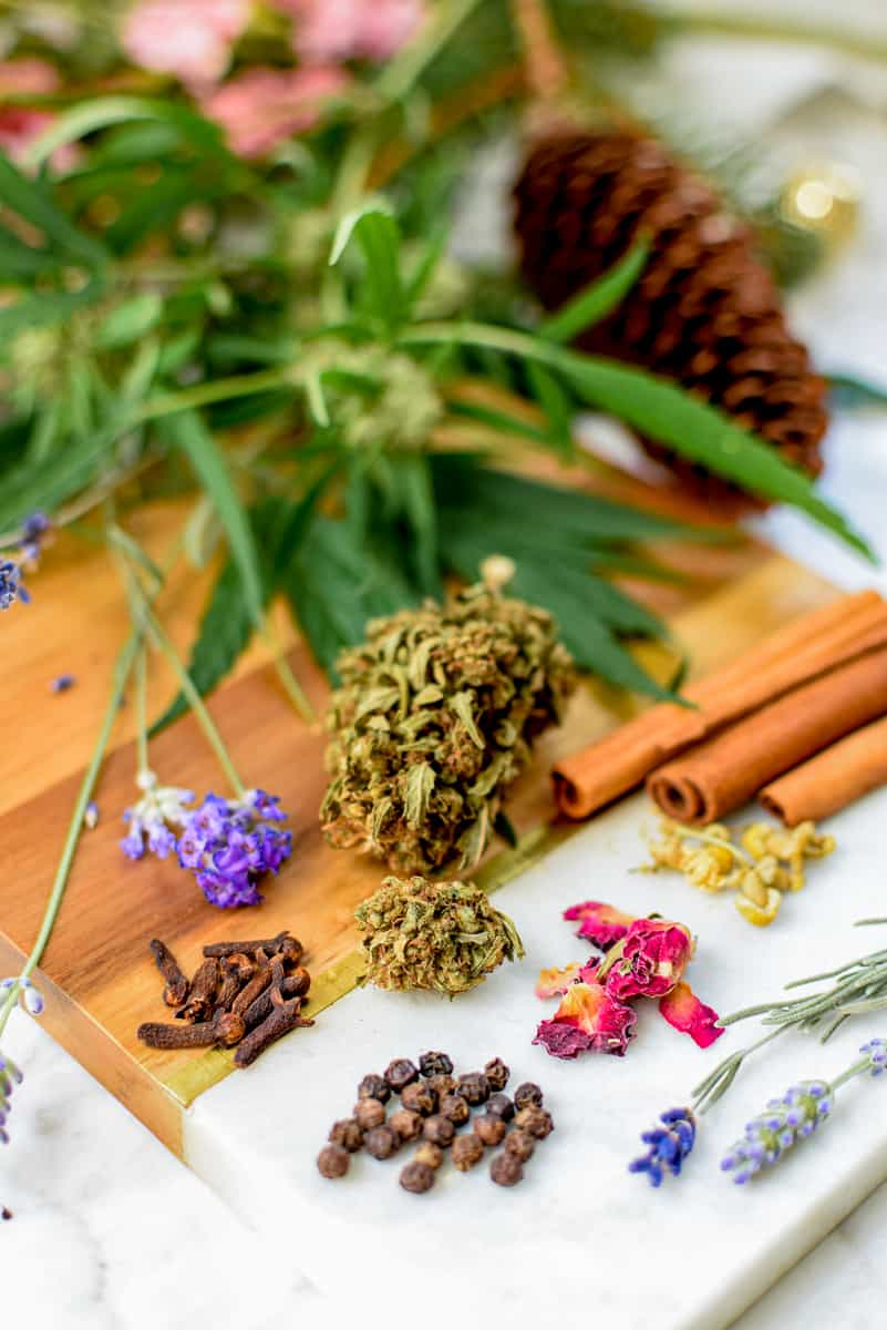 What Are Terpenes by Emily Kyle Nutrition7 - What Are Terpenes & Why Do They Matter In Cannabis?