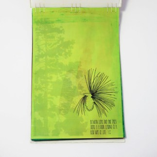 Fifty Trees artist book by Emily Longbrake 03