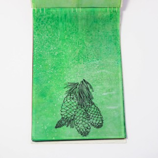 Fifty Trees artist book by Emily Longbrake 06