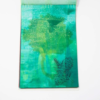 Fifty Trees artist book by Emily Longbrake 12