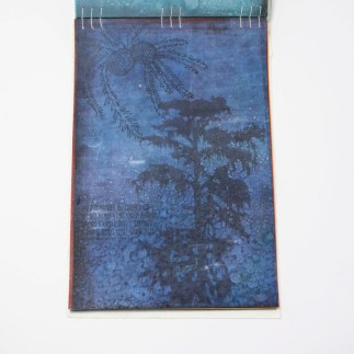 Fifty Trees artist book by Emily Longbrake 23
