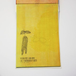 Fifty Trees artist book by Emily Longbrake 35