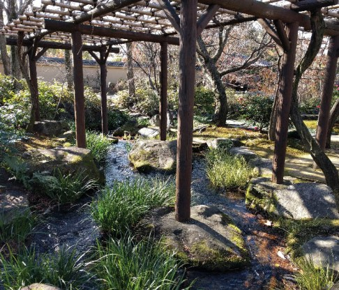 Japan 2017 travel photos 32