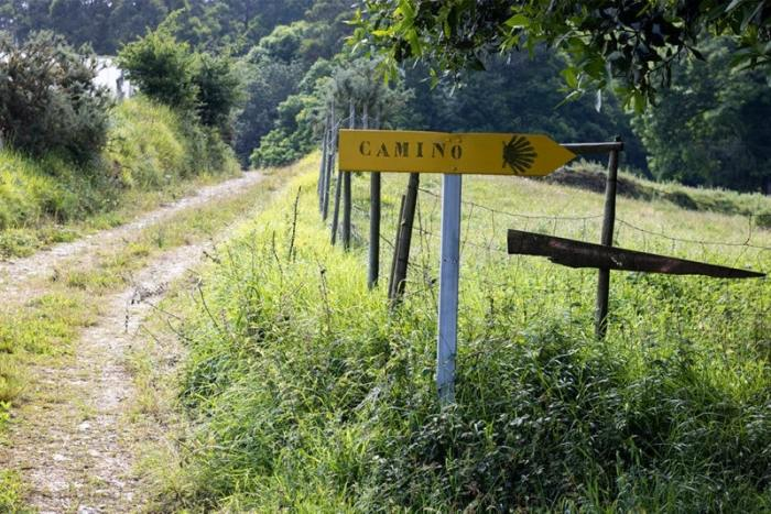 What is the Camino del Norte