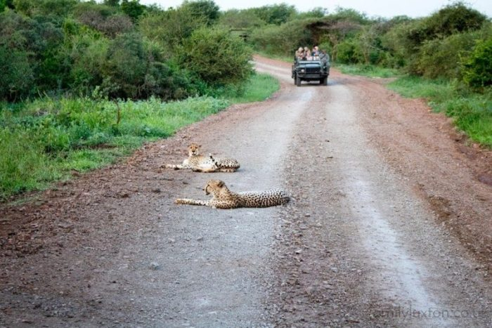 KwaZulu-Natal Itinerary for South Africa