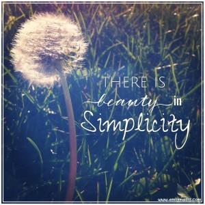 Simplicity, Joyful Habits, Happiness, Back to Basics, Simplify, Mindset, Life Coach, Emily Madill, LovingLife