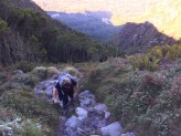 Hiking to the top of Table Mountain in Kirstenbosch Botanical Garden