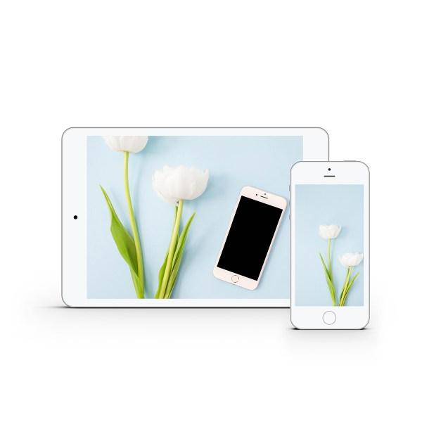 White Tulips Styled Stock Bundle | Emily Moore | www.emilymoorephoto.com