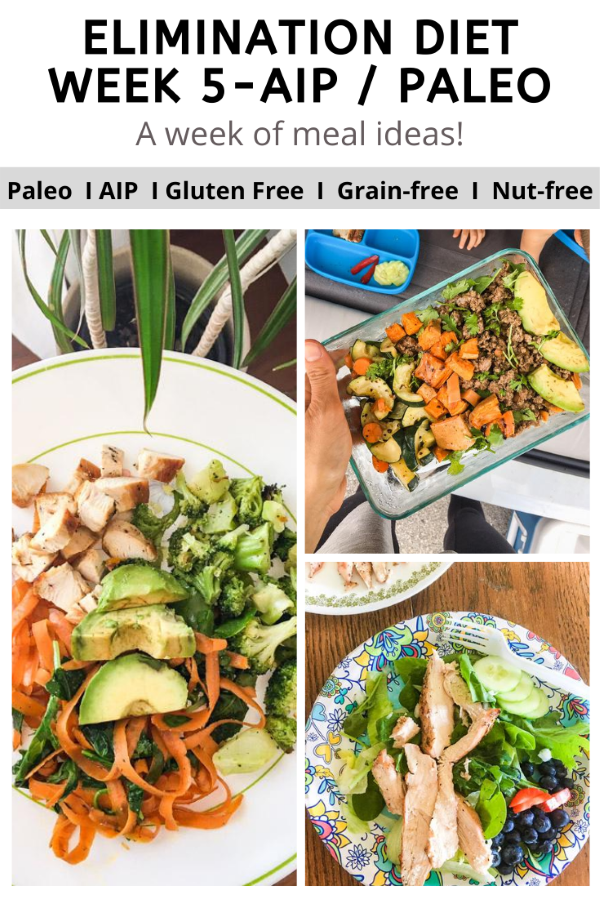 AIP Elimination Diet Meal Ideas -Week 5 (while Traveling