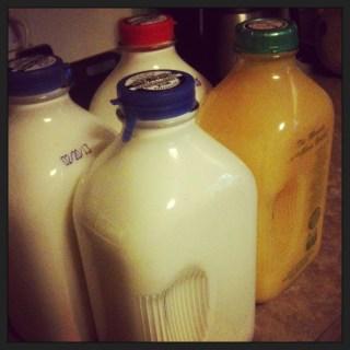 Thatcher Farm Milk Glass Bottles