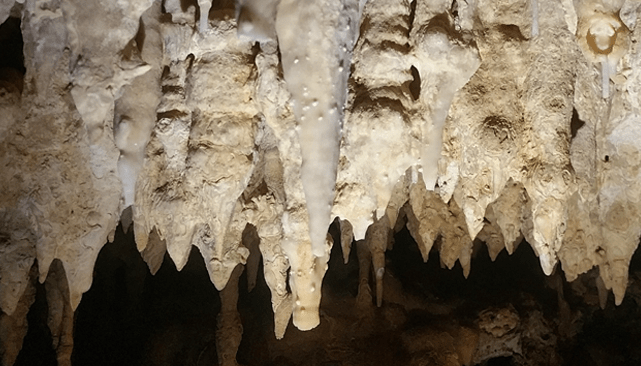 Visiting Cayman Crystal Caves: Grand Cayman Island