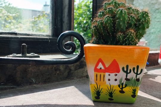 whats-on-my-windowsill-cactus