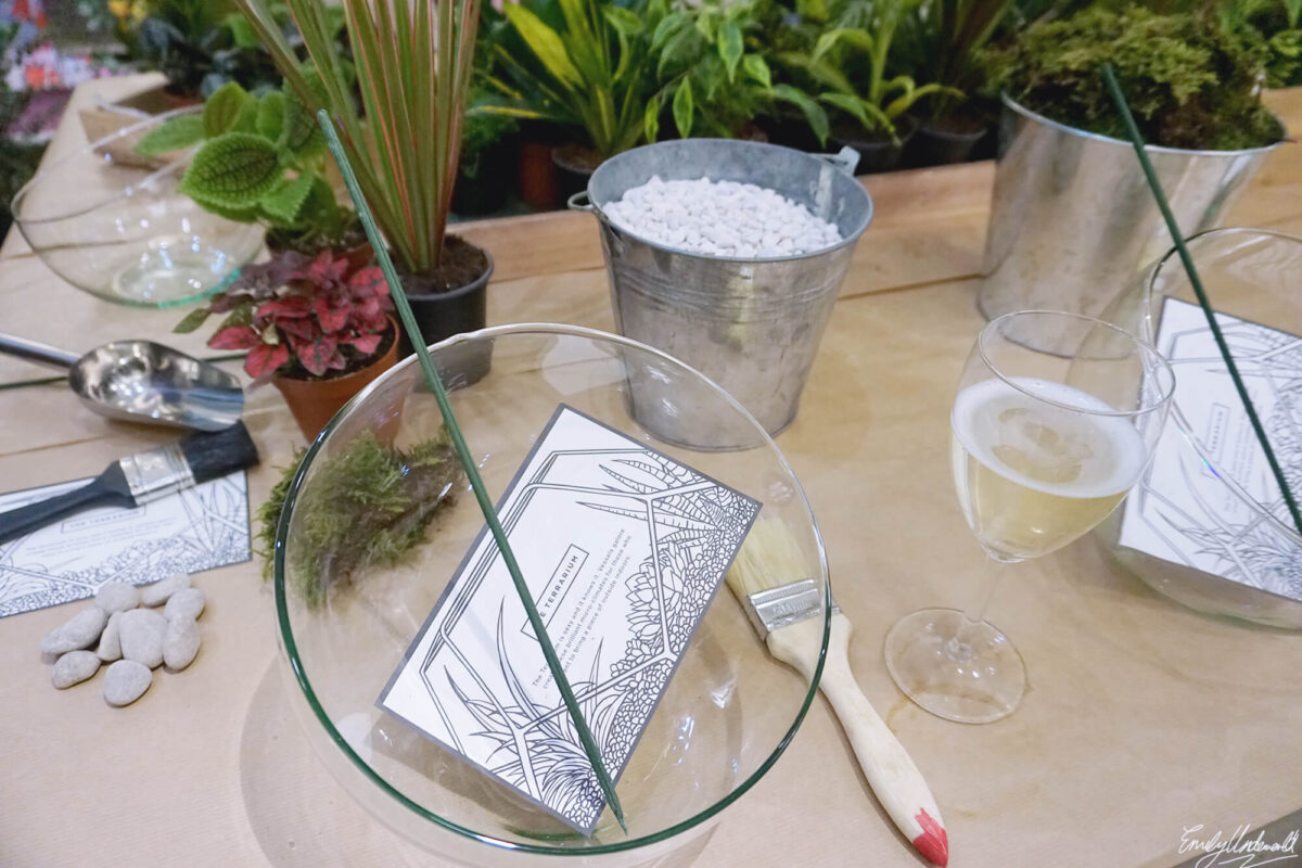 Making a Terrarium at Grace & Thorn with Obby!
