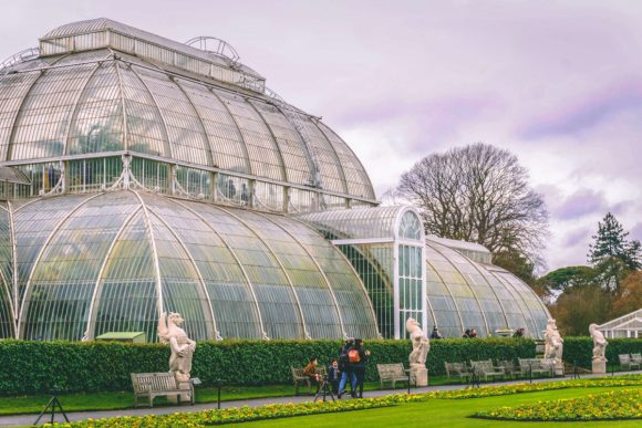 Kew Gardens: The Palm House