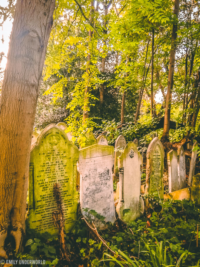 Exploring Tower Hamlets Cemetery Park